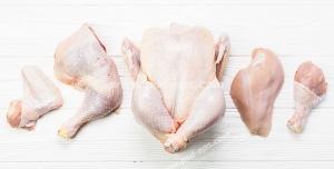 عکس با کیفیت تبلیغاتی مرغ کامل در کنار ران و سینه و بال مرغ