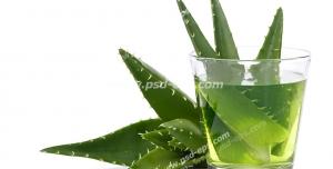 عکس با کیفیت تبلیغاتی یک لیوان نوشیدنی آلوورا در کنار گیاه آلوورا
