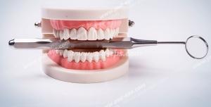 عکس با کیفیت تبلیغاتی آناتومی دهان و دندان و آینه دهان در بین دندان ها