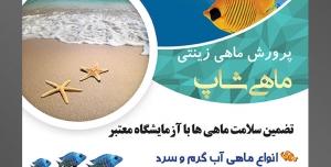 طرح آماده لایه باز پوستر یا تراکت پرورش ماهی های زینتی با محوریت تصویر دو ماهی زیبا به رنگ زرد در اقیانوس