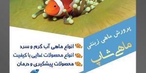 طرح آماده لایه باز پوستر یا تراکت پرورش ماهی های زینتی با موضوع تصویر سه دلقک ماهی در کنار گیاهان دریایی