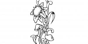 قارچ و گل